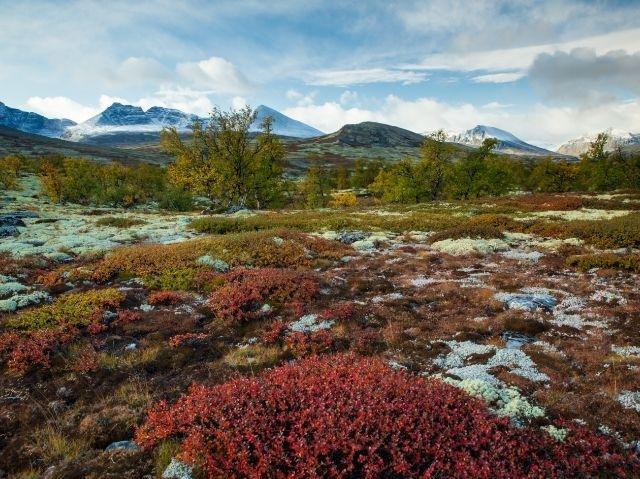 Noorwegen - Rondane NP