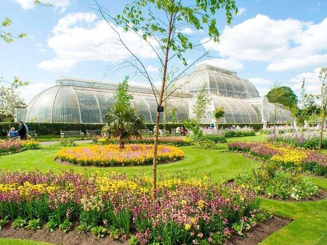 Groot-Brittannië - Engeland - Kew Gardens