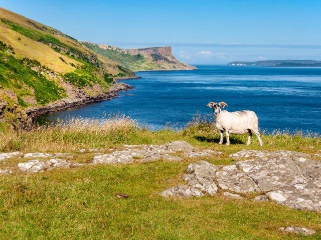 Noord-Ierland - Rathlin Island