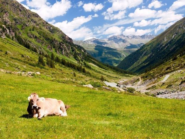 Oostenrijk - Vorarlberg