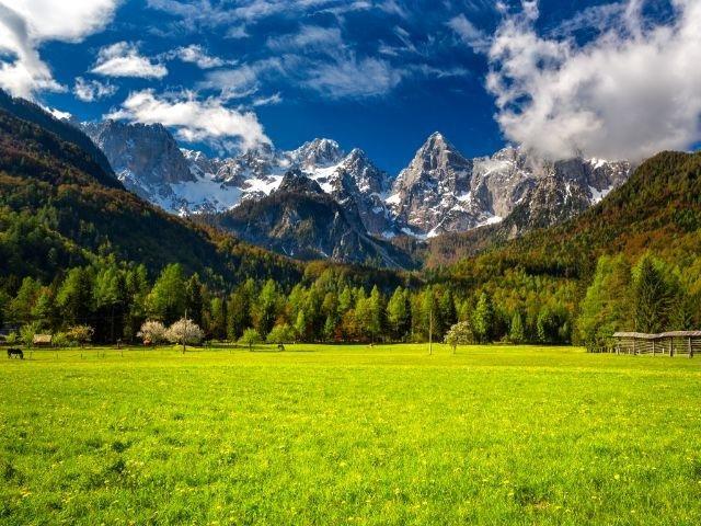 Slovenië - Spik