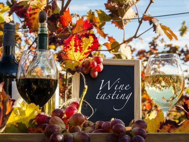 Duitsland - wijnproeverij