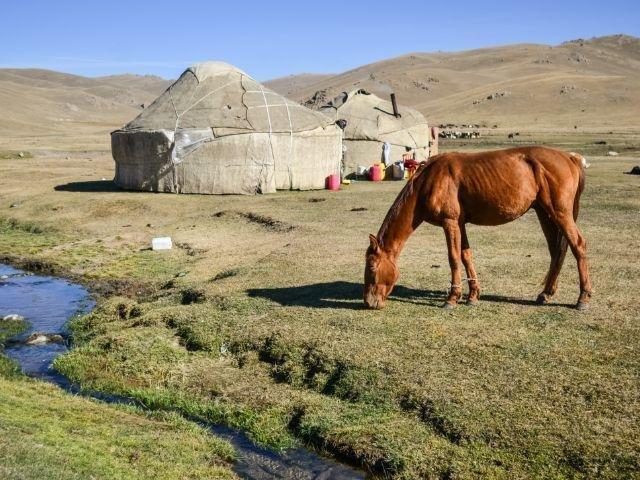 Kirgistan - Son Kul omgeving