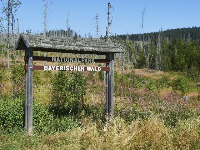 Duitsland - Nationalpark Bayerischer Wald