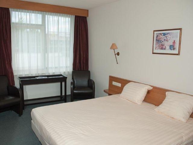 Steenwijk - Fletcher Hotel Steenwijk - voorbeeld kamer
