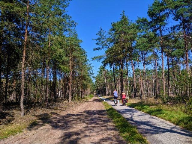 Nationaal Park Sallandse Heuvelrug