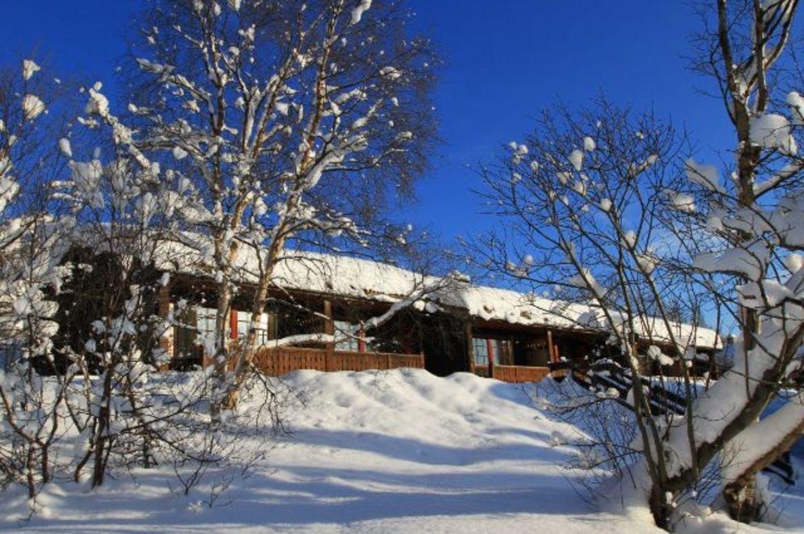 Wintersport Hovi Cabins - Oad busreizen