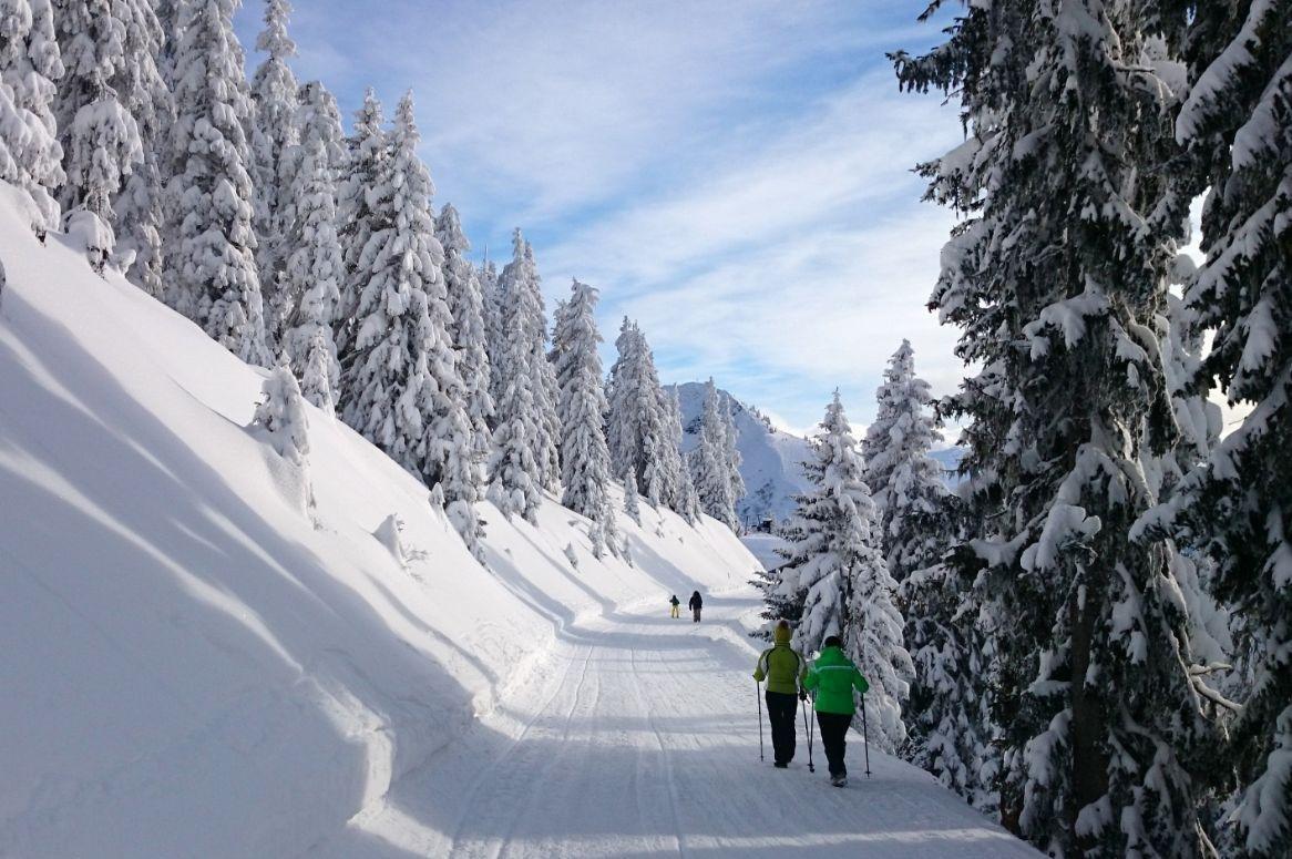 Skiën, langlaufen en wandelen door het mooie Alpbachtal - Oad bu