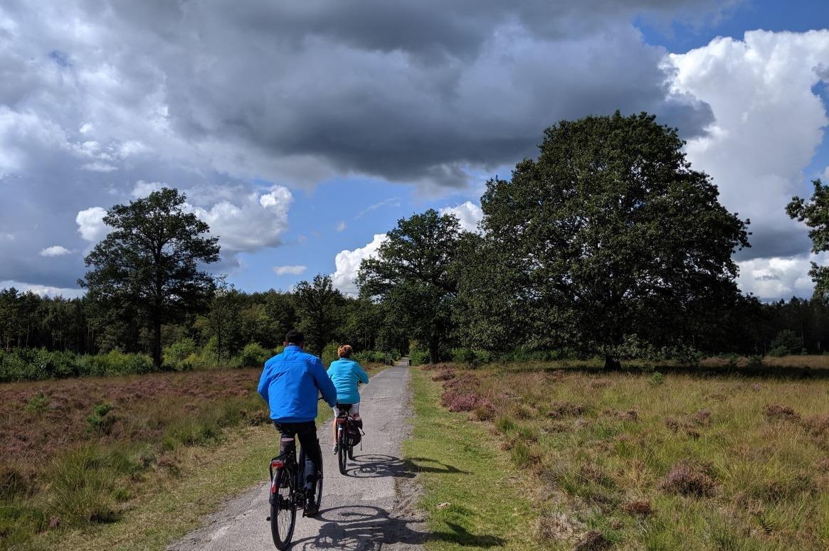 landschap fietsen